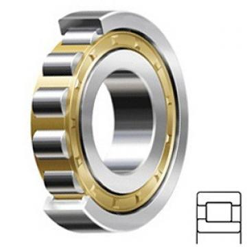 4.724 Inch | 120 Millimeter x 12.205 Inch | 310 Millimeter x 2.835 Inch | 72 Millimeter  CONSOLIDATED BEARING NJ-424 M W/23  Cylindrical Roller Bearings