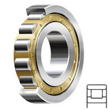 1.378 Inch | 35 Millimeter x 2.835 Inch | 72 Millimeter x 0.669 Inch | 17 Millimeter  CONSOLIDATED BEARING N-207 M  Cylindrical Roller Bearings