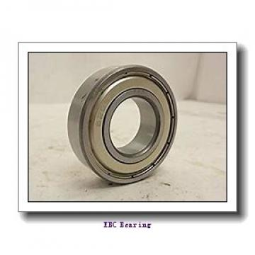 EBC 6009 2RS  Single Row Ball Bearings