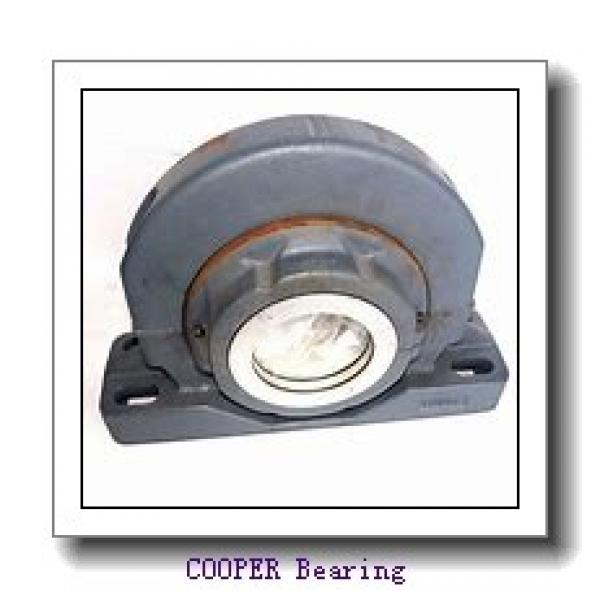 COOPER BEARING 02BCP203GR  Mounted Units & Inserts #2 image